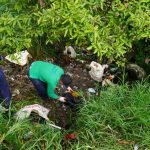 #AccionesQueSuman | En el marco del día del medio ambiente, fueron intervenidos dos puntos críticos en nuestro municipio.