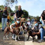 Caminata con el grupo de Caldas Joven y los perritos del albergue municipal.
